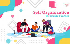 Self organisation – the imbibed culture