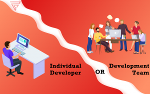 Sole developer or development team – the need of the hour